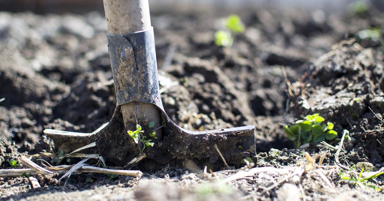 Лопата, огород